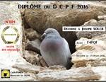 F4FQF- DIP HONNEUR 2016 mixte